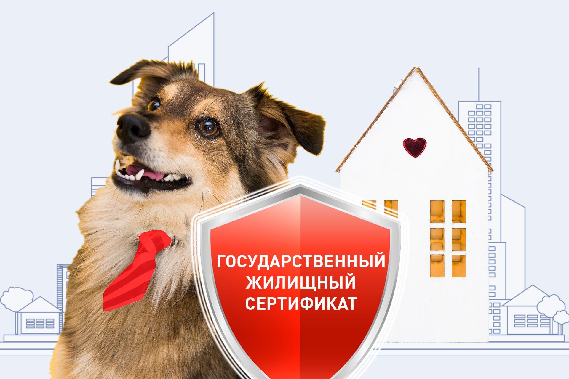 Государственные жилищные сертификаты